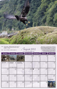 page from 2012 HWF Calendar