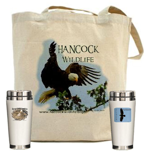 tote bag and travel mugs from Cafe Press store