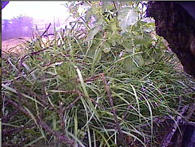 March 10, 2008