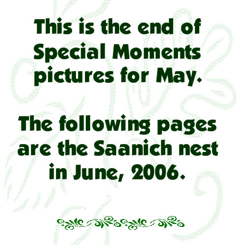 THE END OF MAY, 2006