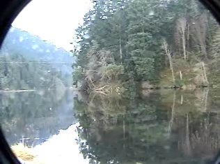 goldstream in a circle pic