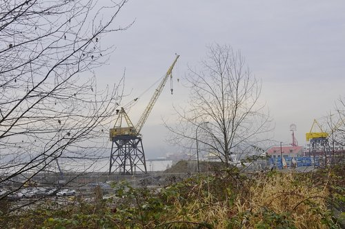 270 - Looking from the Esplanade Nest to eagle perched on favorite old crane-
