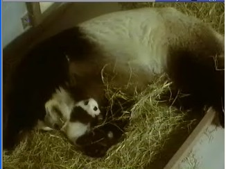 Lun and BB...awwww!!!