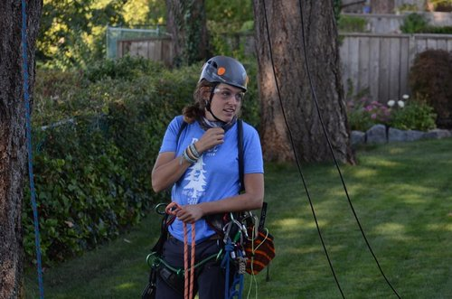 Kristine last discussions before ascending 105 feet up the tree