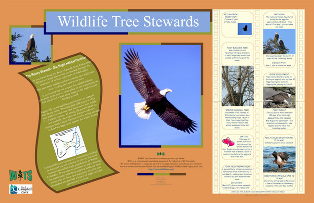 Vancouver Island WiTs and Campbell River Rotary Poster