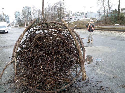 190 - David's completed nest -- the rest is up to the eagles!