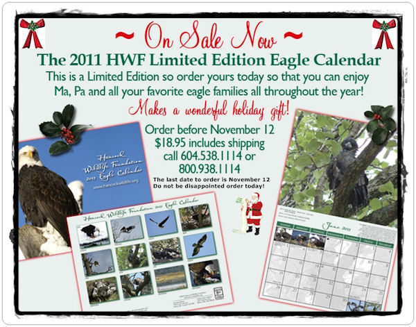 Hancock Wildlife Calendar Now Available
